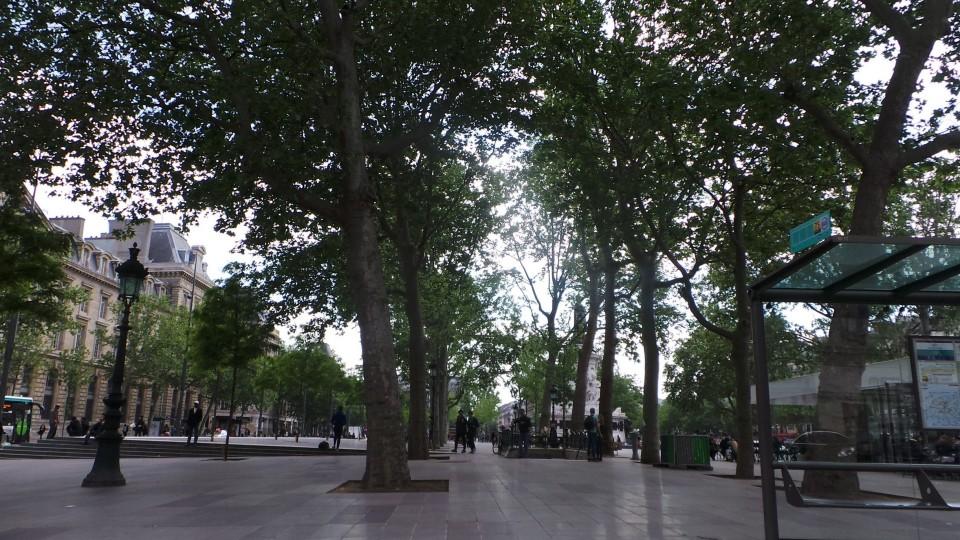 Paris  (10)